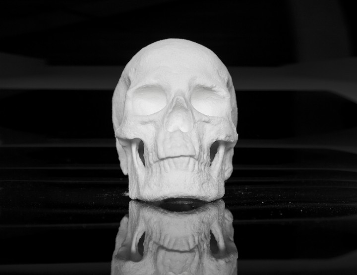 Outstanding Artists | Skull made of Cocaine