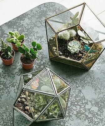 Décor Tip: Urban Outfitters' Diamond-Shaped Terrarium Pots