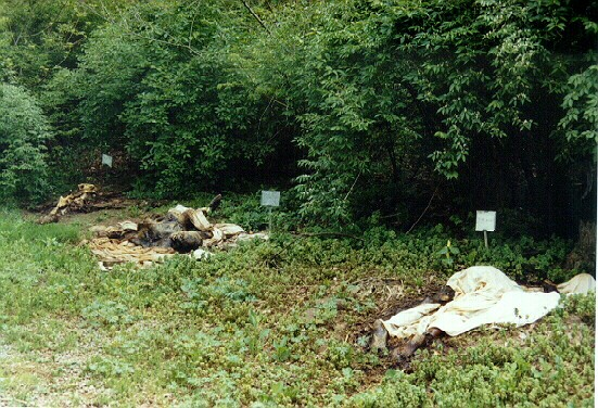 Places to be... not!: Body Farm - Leichen lagern unter freier Sonne