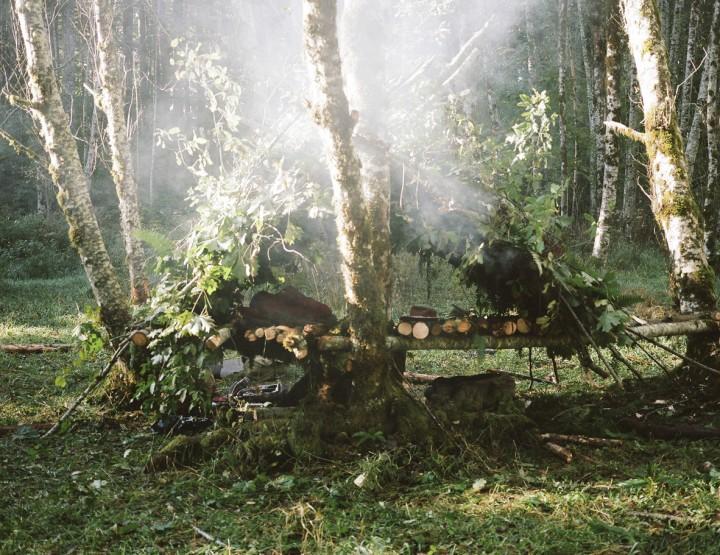 How to Survive: Eine Hütte im Wald bauen