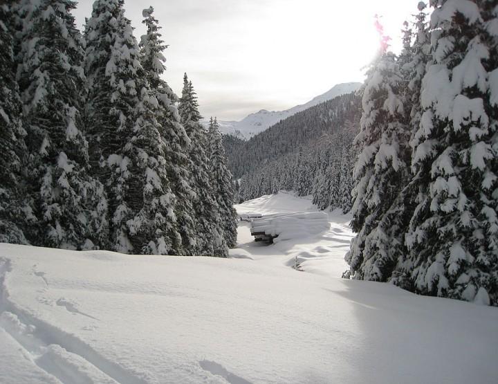 How to Survive: Schnee, dein Helfer!