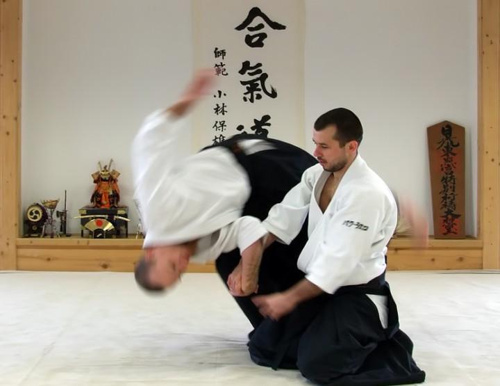 Aikido - Die sanfteste Kunst des Kampfes