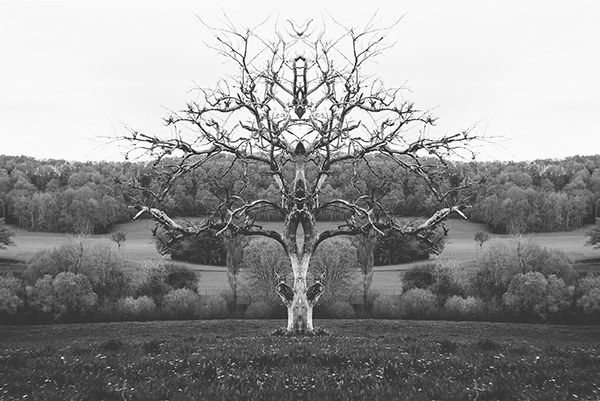 Künstler im Fokus: Mat Piranda - Rorschach Landschaften
