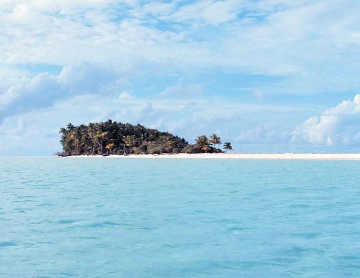 How to Survive: Überleben auf einer einsamen Insel