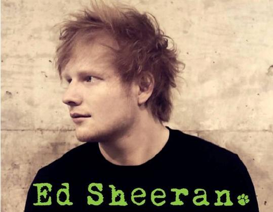 Warum Ed Sheeran wohlmöglich der süßeste Promi aller Zeiten ist