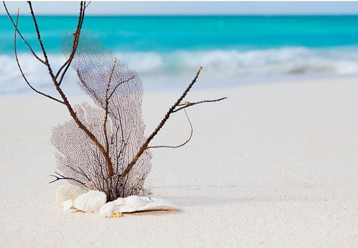 Luxus Urlaubsziele – Wo Stars ihren Sommer verbringen