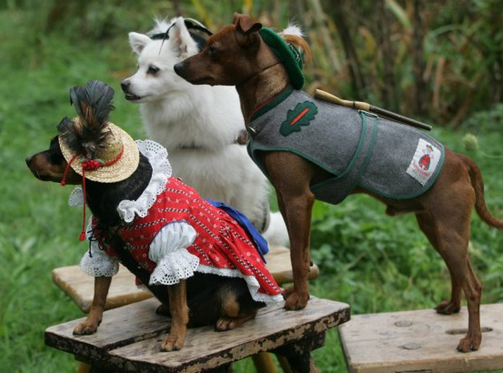 Dirndls for Wiener Dogs