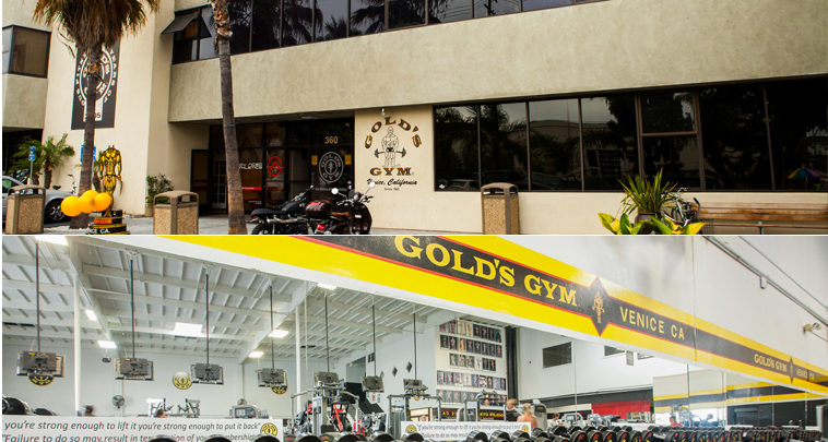 Starstruck at Gold's Gym, Venice