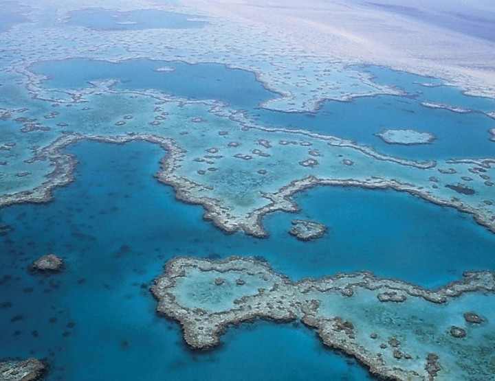 Bedrohtes Paradies - Das Great Barrier Reef