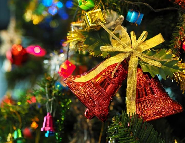 Woher kommt der Weihnachtsbaum?