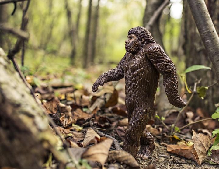 Die Bigfoot Fälschungen
