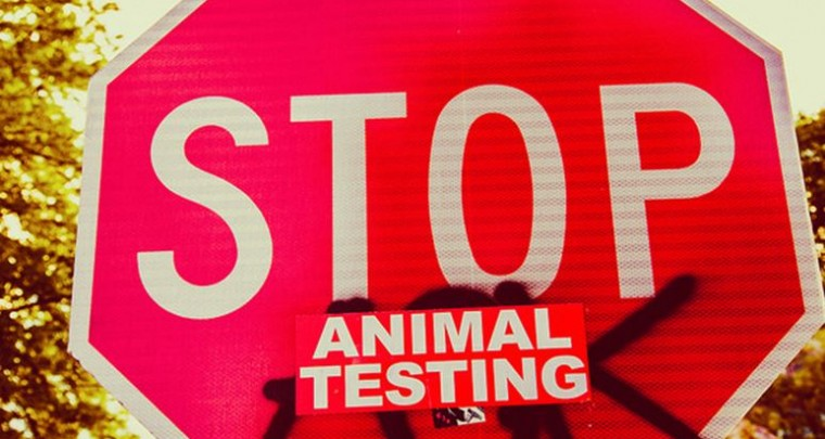 4 tolle Make-up Marken, die auf Tierversuche verzichten!