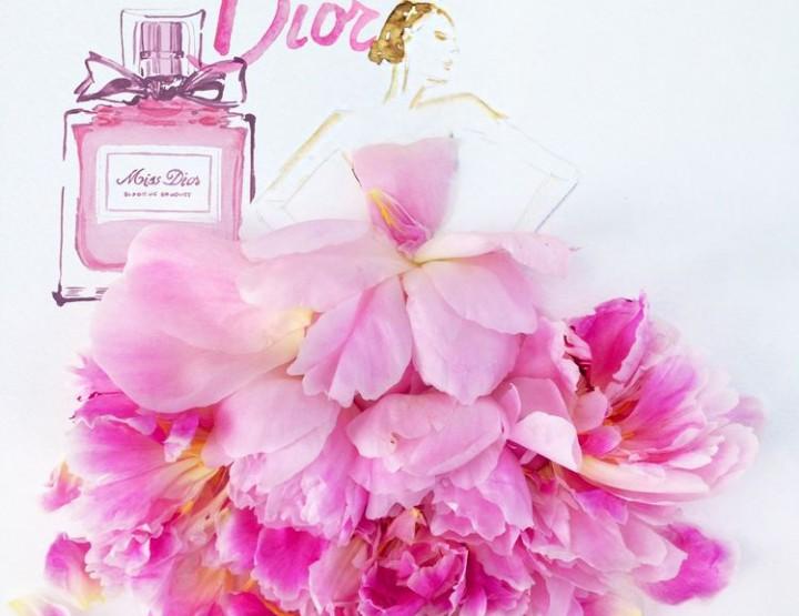 Grace Ciao - Modeillustrationen aus echten Blumen