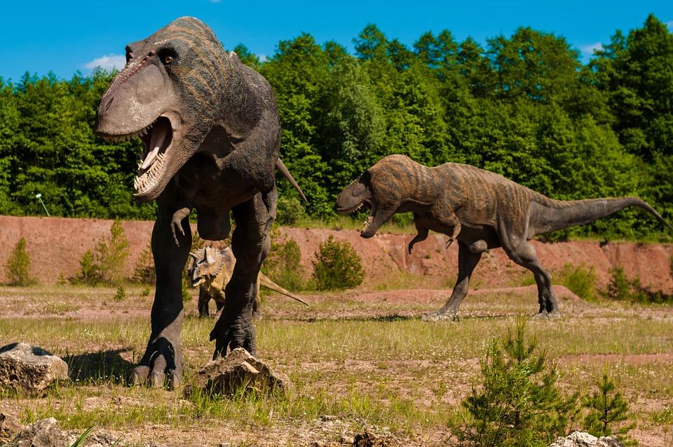 asteroid dinosaur mammals - photo #37