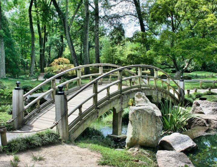 Die Kunst des japanischen Gartenbaus