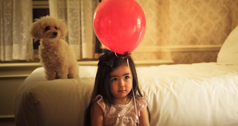 Parallelen in der Erziehung von Kindern und Hunden