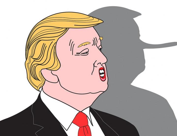 Top 3 der dümmsten Trump Sprüche