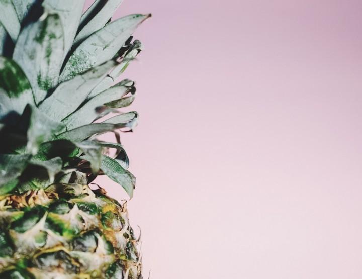 Sponge ananassi hotell