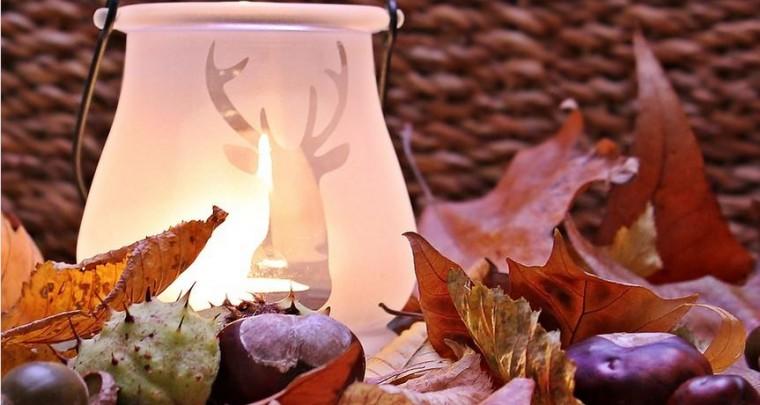 Die schönsten Wohnaccessoires für den Herbst