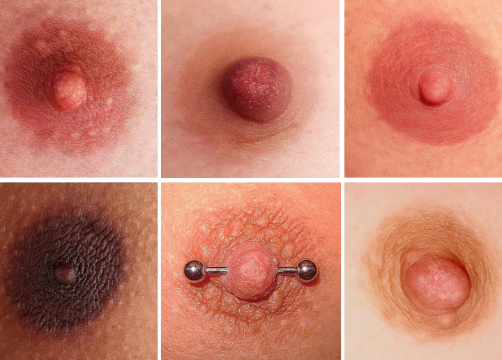 Genderless Nipples