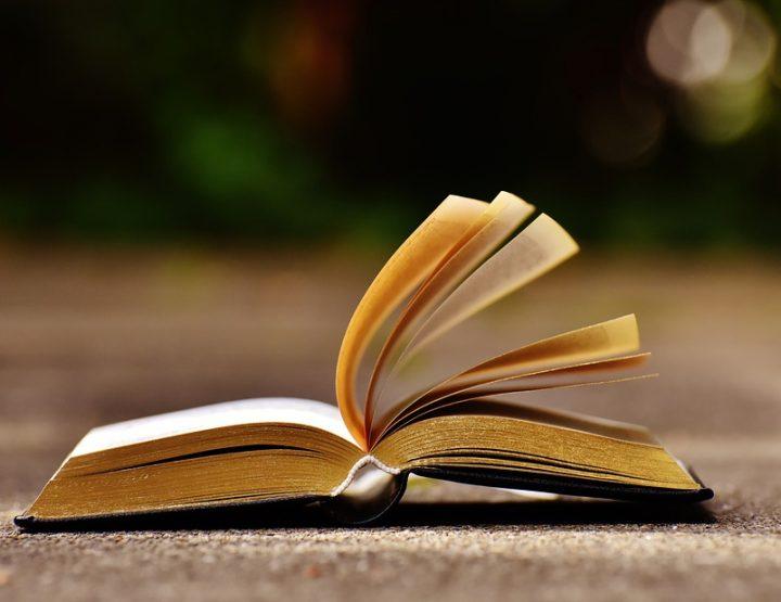 Die beste Reiseliteratur