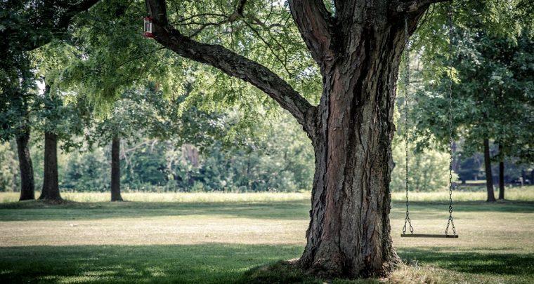 Die schönsten Parks Berlins