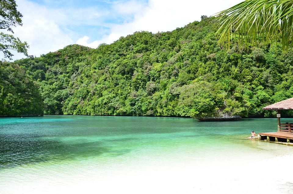 Die Natur von Palau
