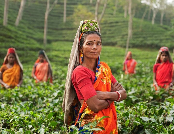 Indische Frauen auf dem Weg zur Emanzipation