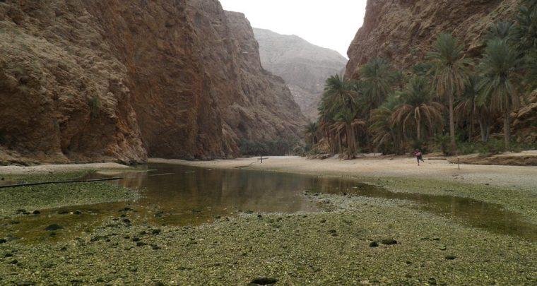Cunsigliu di viaghju - Oman