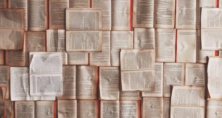 Letteratura: Berlinu - U festival di letteratura
